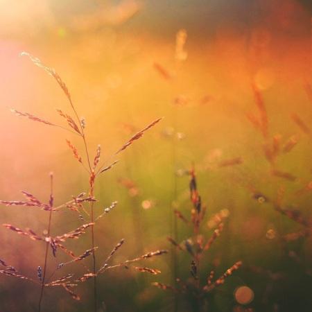 #re-awakening #healing #mindfulness