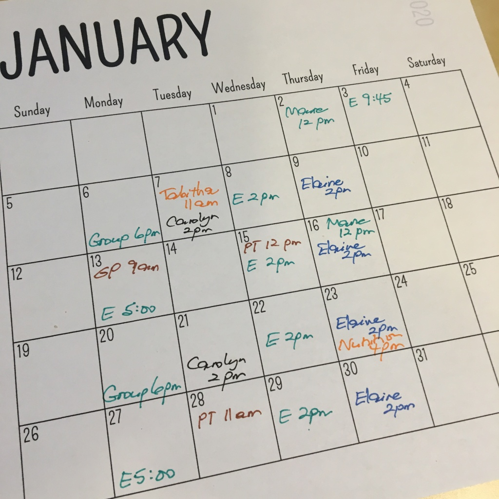 Image of a calendar for the month of January, with therapy appointments written in for 17 of 21 days, and two appointments some days.