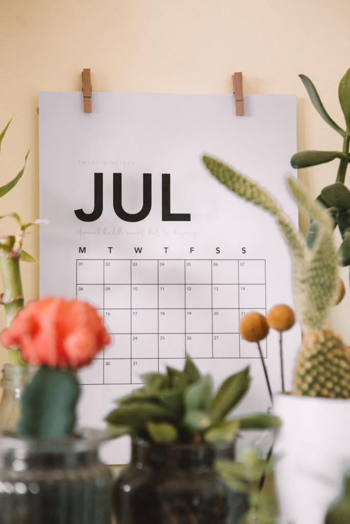 Image of a calendar for the month of July, hanging on a wall behind several house plants. July matters because we have had therapy ruptures in July before.